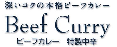 深いコクの本格ビーフカレー Beef Curry 特性中辛