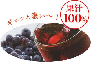 ギュッと濃い~!果汁 100%